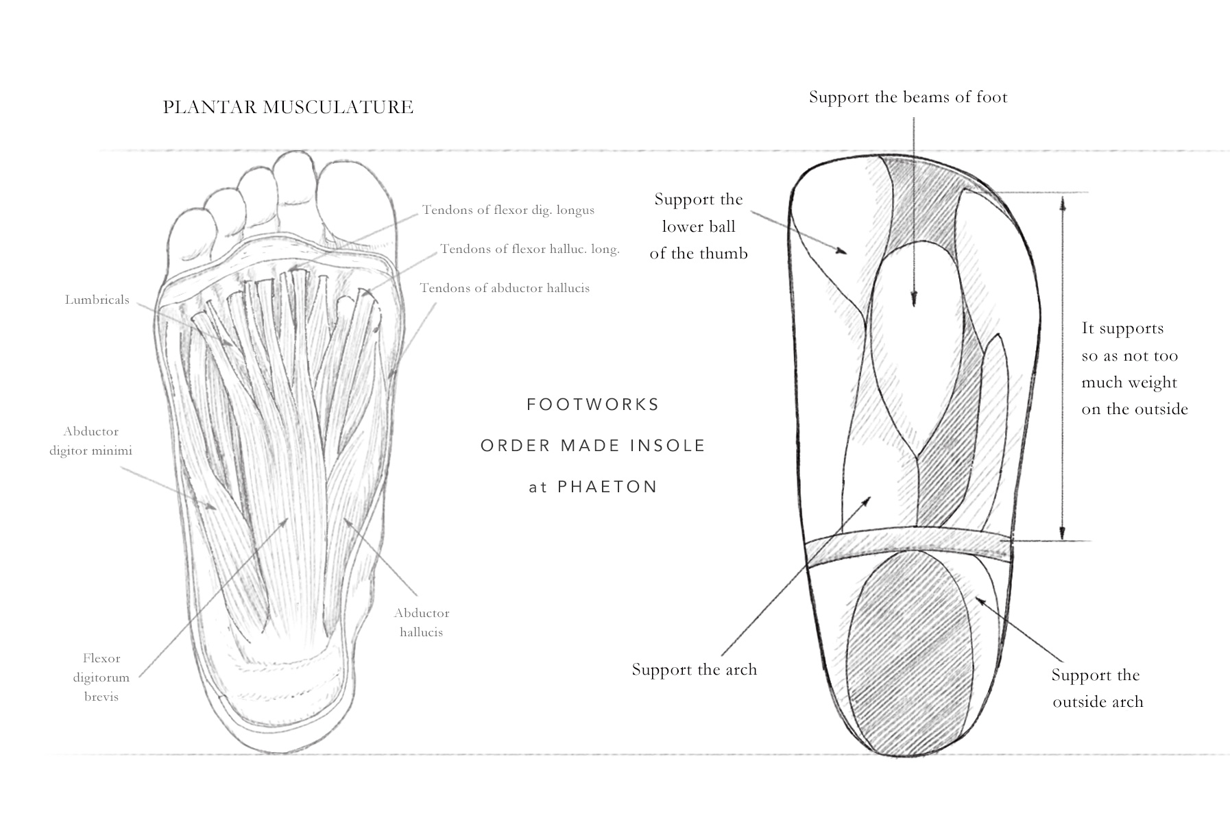 footworks_insole_top